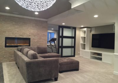 Buffalo Grove Basement Project